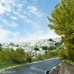 Cappelletta Passo neve primavera 24 –05-2013 (241)