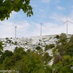 Cappelletta Passo neve primavera 24 –05-2013 (257)