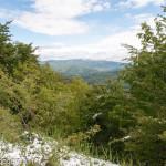 Cappelletta Passo neve primavera 24 –05-2013 (264)