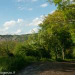 Val Baganza primavera (100)