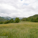 neve Albareto Val Gotra 24-05-2013 (149)