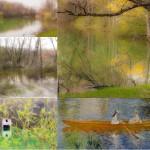 t Quadro Lago Val Pessola Castelcorniglio (236) collage
