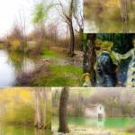 t Quadro Lago Val Pessola Castelcorniglio (239) collage