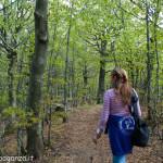 Monte Gottero (153) foresta  02-06-2013
