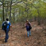 Monte Gottero (167) foresta  02-06-2013