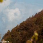 Monte Gottero (240) 02-06-2013
