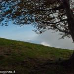 Monte Gottero (340) 02-06-2013
