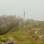 Monte Gottero (358) vetta 02-06-2013