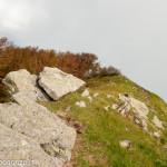 Monte Gottero (380)  roccia 02-06-2013
