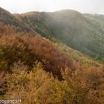 Monte Gottero (385) 02-06-2013