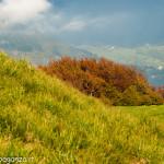 Monte Gottero (427) 02-06-2013