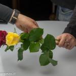 Still Life fiori (194) preparazione