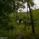 Val Taro primavera 2013 (140)