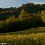 val Grontone - Alta Val Taro (54)