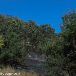 incendio boschivo 25-08-2012 Prelerna (Solignano PR) (19)