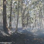 incendio boschivo 25-08-2012 Prelerna (Solignano PR) (24)