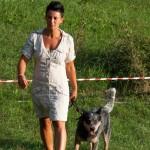 Fiera Fungo Albareto 2013-09-07 Raduno Cinofilo (439)