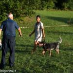 Fiera Fungo Albareto 2013-09-07 Raduno Cinofilo (483)