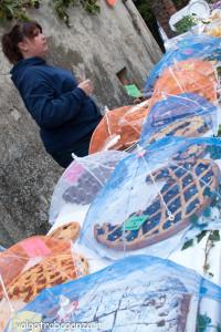 2013-10-13 (115) Castagna Folta Torte