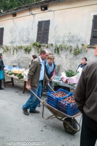 2013-10-13 (135) Castagna Folta castagne