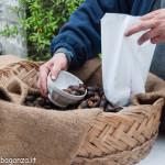 2013-10-13 (204) Castagna Folta caldarroste