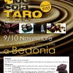 Locandina Cioccolataro 2013