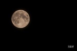 luna piena Cacciatore 18-10-2013 (2)