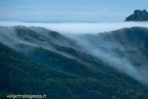 nebbia 2013-10-05 (110) Val Taro