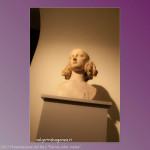 21-10-2013 Parma color Malva (231) Sala Bartolini Toschi