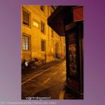 21-10-2013 Parma color Malva (255)