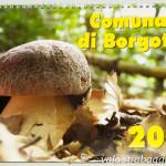 Calendario 2013 Comunalie Borgotaro (10) Fungo Porcino