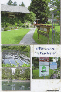 Cristina Stefano libro (28) Agriturismo