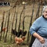 Locandina Elena Fedrigo Gente di Provincia