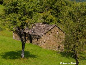 Casoni di Roberto Pavio 2005 agosto Caffaraccia (1)
