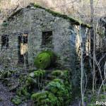 Casale Tornolo di Roberto Pavio (108) Mulino