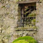 Casale Tornolo di Roberto Pavio (111)