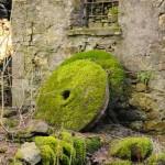 Casale Tornolo di Roberto Pavio (112) Macine