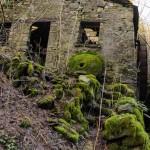 Casale Tornolo di Roberto Pavio (119) mulino