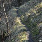 Casale Tornolo di Roberto Pavio (136) sentiero