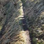 Casale Tornolo di Roberto Pavio (139) sentiero