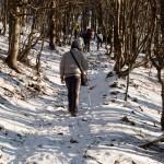 Monte Gottero di Valentina Bruschi 25-01-2014 (113) sentiero