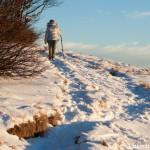 Monte Gottero di Valentina Bruschi 25-01-2014 (121) prato