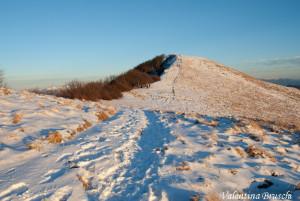 Monte Gottero di Valentina Bruschi 25-01-2014 (124) vetta