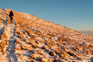 Monte Gottero di Valentina Bruschi 25-01-2014 (129) erba fina