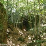 Monte Penna escursione 2009  (101) grotte