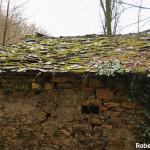 Setterone  Bedonia di Roberto Pavio 012 Mulino tetto