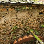 Setterone  Bedonia di Roberto Pavio 022 mulino