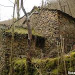Setterone  Bedonia di Roberto Pavio 060 mulino