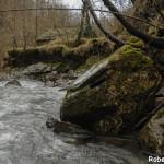 Setterone  Bedonia di Roberto Pavio 072 (2) mulino torrente