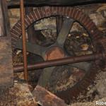 Setterone  Bedonia di Roberto Pavio 089 mulino